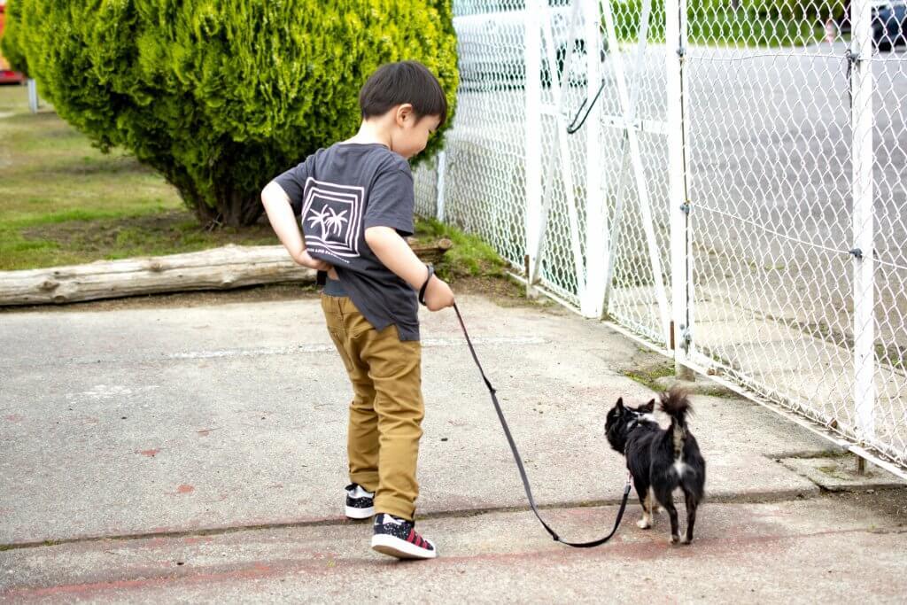 ペットを飼うことは子どもの教育にどう活きるの?